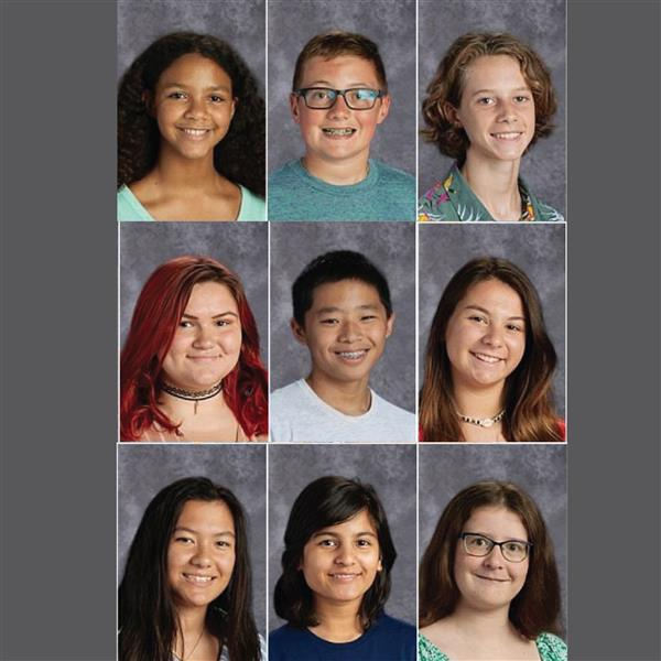 Cape district students earning top honors the Delaware Secondary School Mathematics League.